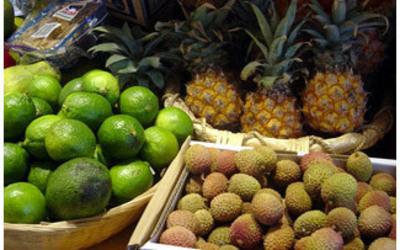 Groenten & Fruitcentrale  - Exotisch Fruit